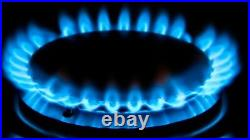 New World Vision 900 Dual Fuel LPG Conversion Kit 012860220 Calor Propane